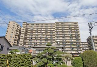 中島1379-2 ベルパーク茅ヶ崎 カトレア